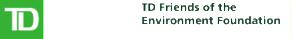 TD_FEF_logo